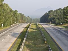 roadside vegetation management