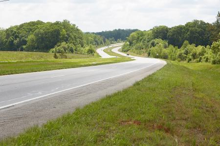 roadside vegetation-1
